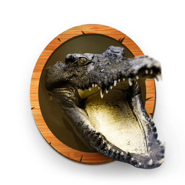 Река крокодилов
